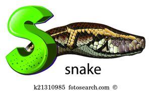 Squamata Clip Art Illustrations. 22 squamata clipart EPS vector.