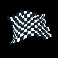 Racing Flag Vector.