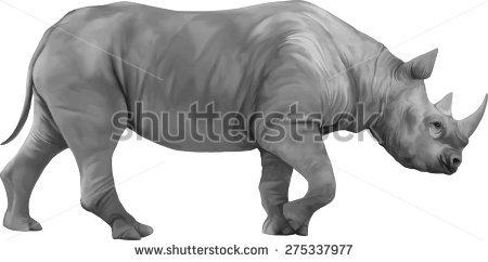 Ceratotherium Simum Stock Vectors & Vector Clip Art.