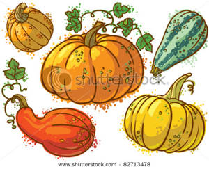 Image: A Collection of Squash.