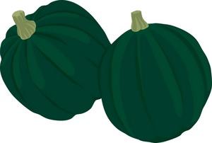 Green Squash Clipart.