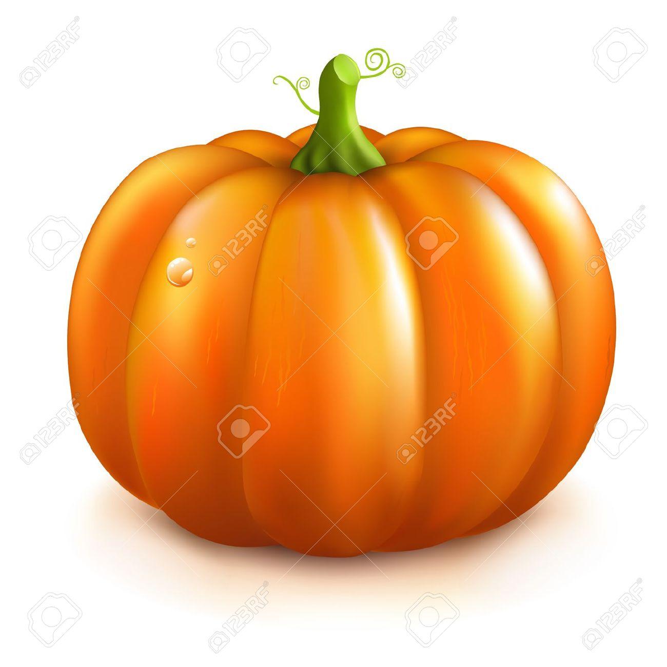Orange squash clipart.