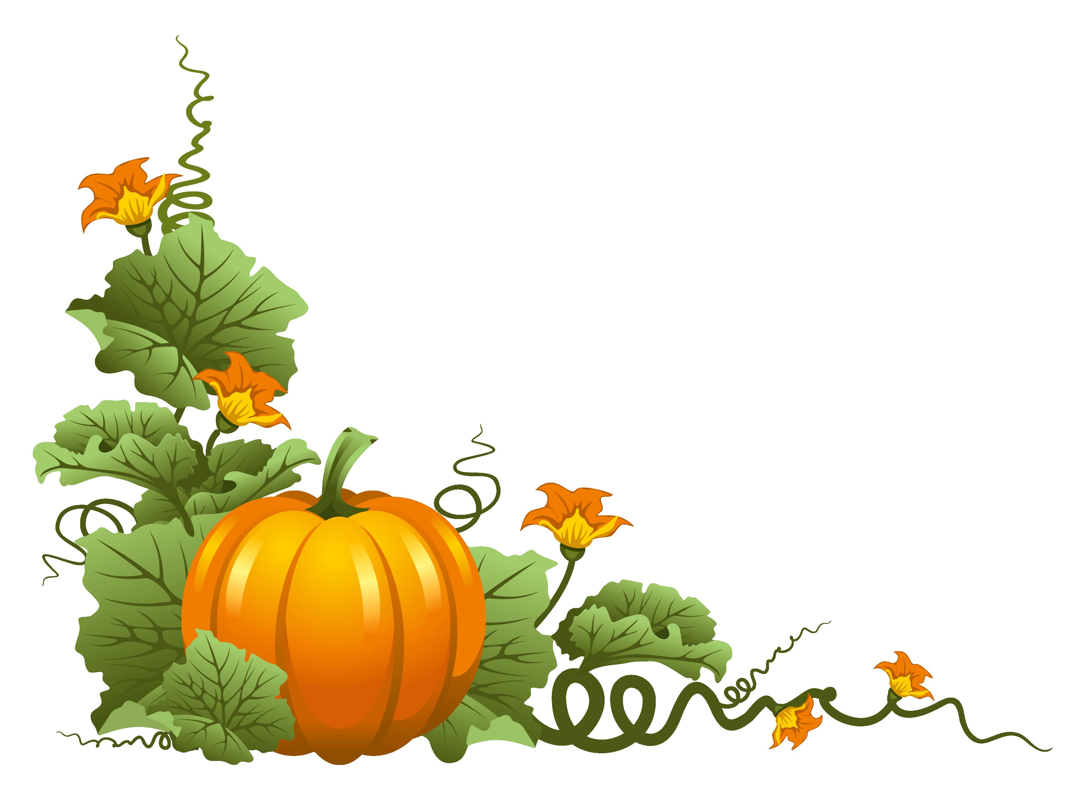Pumpkin Plant Clipart.