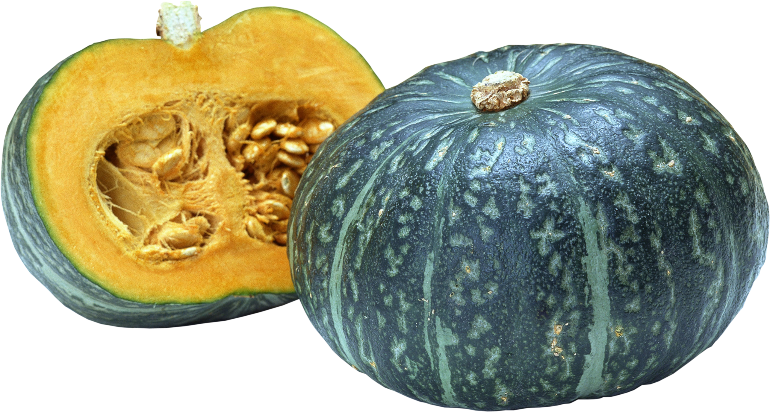 Squash Png (107+ images in Collection) Page 1.