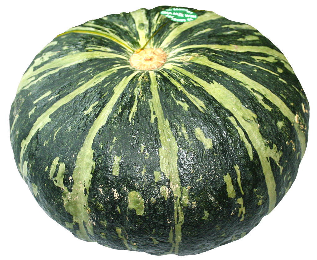 Winter squash PNG Images.
