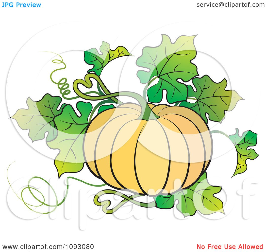 Showing post & media for Cartoon pumpkin plant.