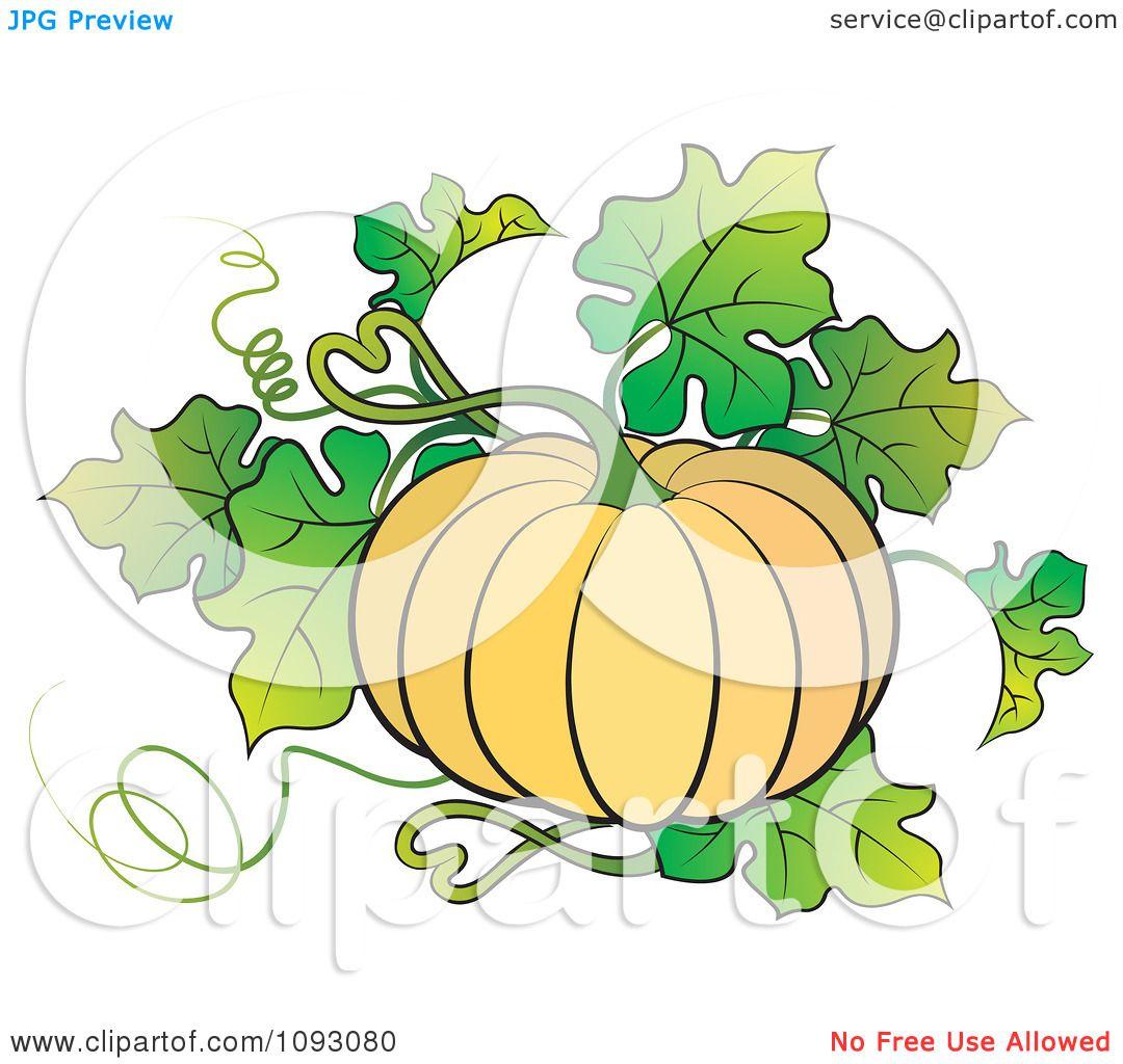 Showing post & media for Cartoon pumpkin plant.