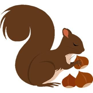 Free squirrel clipart images.