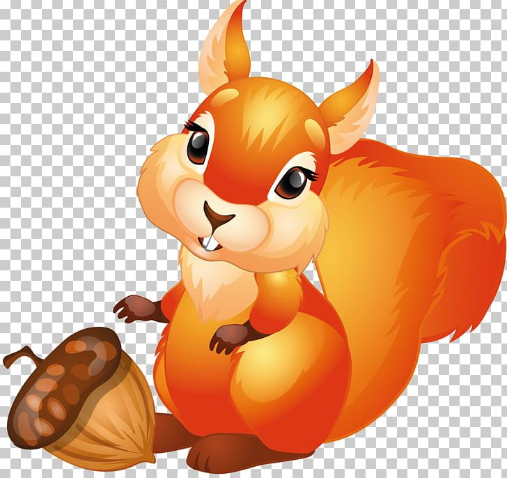 Red Squirrel Tree Squirrels PNG, Clipart, Carnivoran.