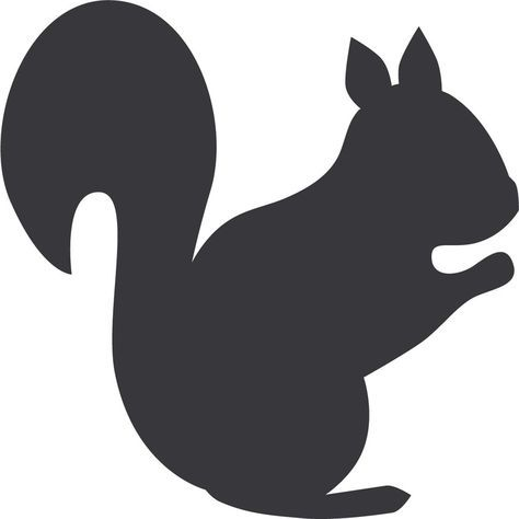 Pictures Of Squirrel.