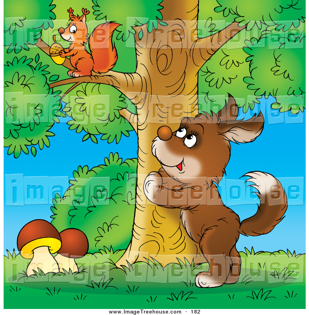 squirrel up a tree clipart clipground