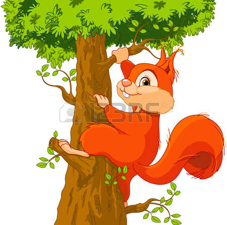3,745 Tree Squirrel Stock Vector Illustration And Royalty Free.