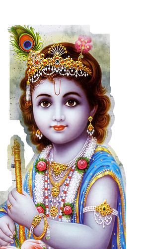 God Krishna PNG Lord Krishna Transparent Image.