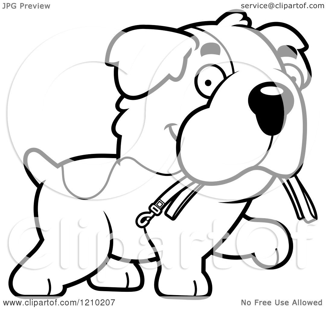 Cartoon of a Black and White St Bernard Dog Carrying a Leash in.
