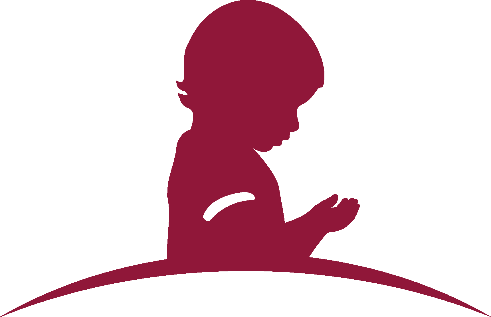 St. Jude Children\'s Research Hospital Logo [stjude.org.