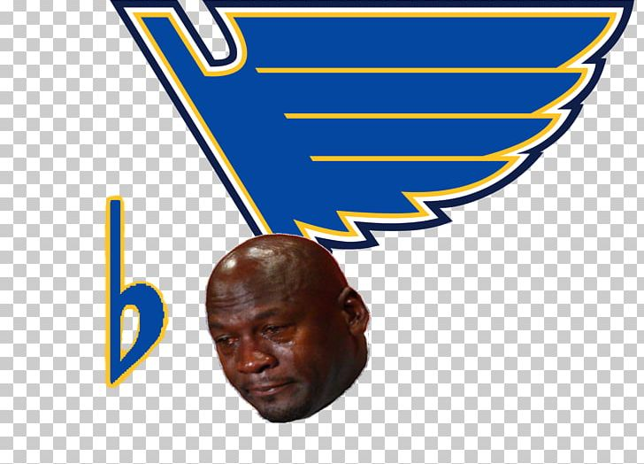 St. Louis Blues 2013.