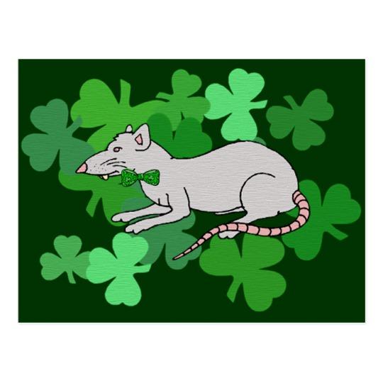 St. Patrick's Day Rat Postcard.