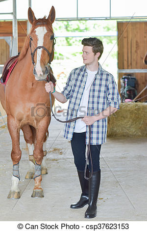 Stock Images of stable boy csp37623153.