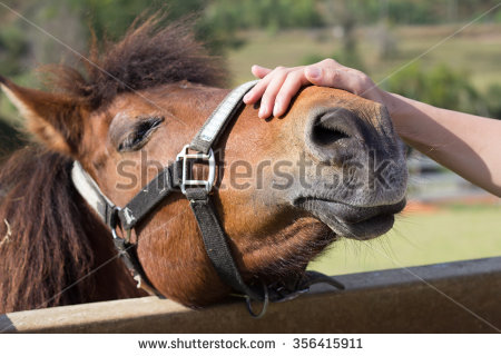 Stable boy clipart.