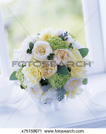 Stock Photography of Bouquet of rose, cloverleaf, dusty miller.
