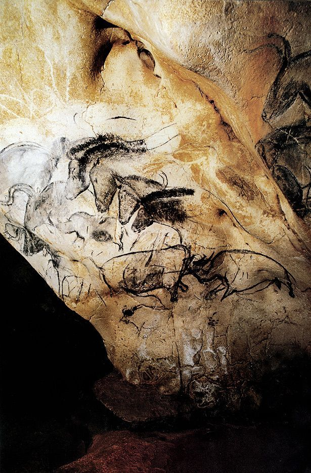 1000+ ideas about Chauvet Cave on Pinterest.