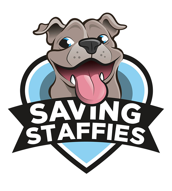 Clipart dogs staffy, Clipart dogs staffy Transparent FREE.