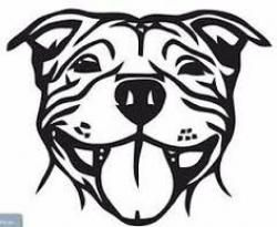 Dog clipart staffy. Silhouette google search pinterest.