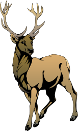 stag Clipart.