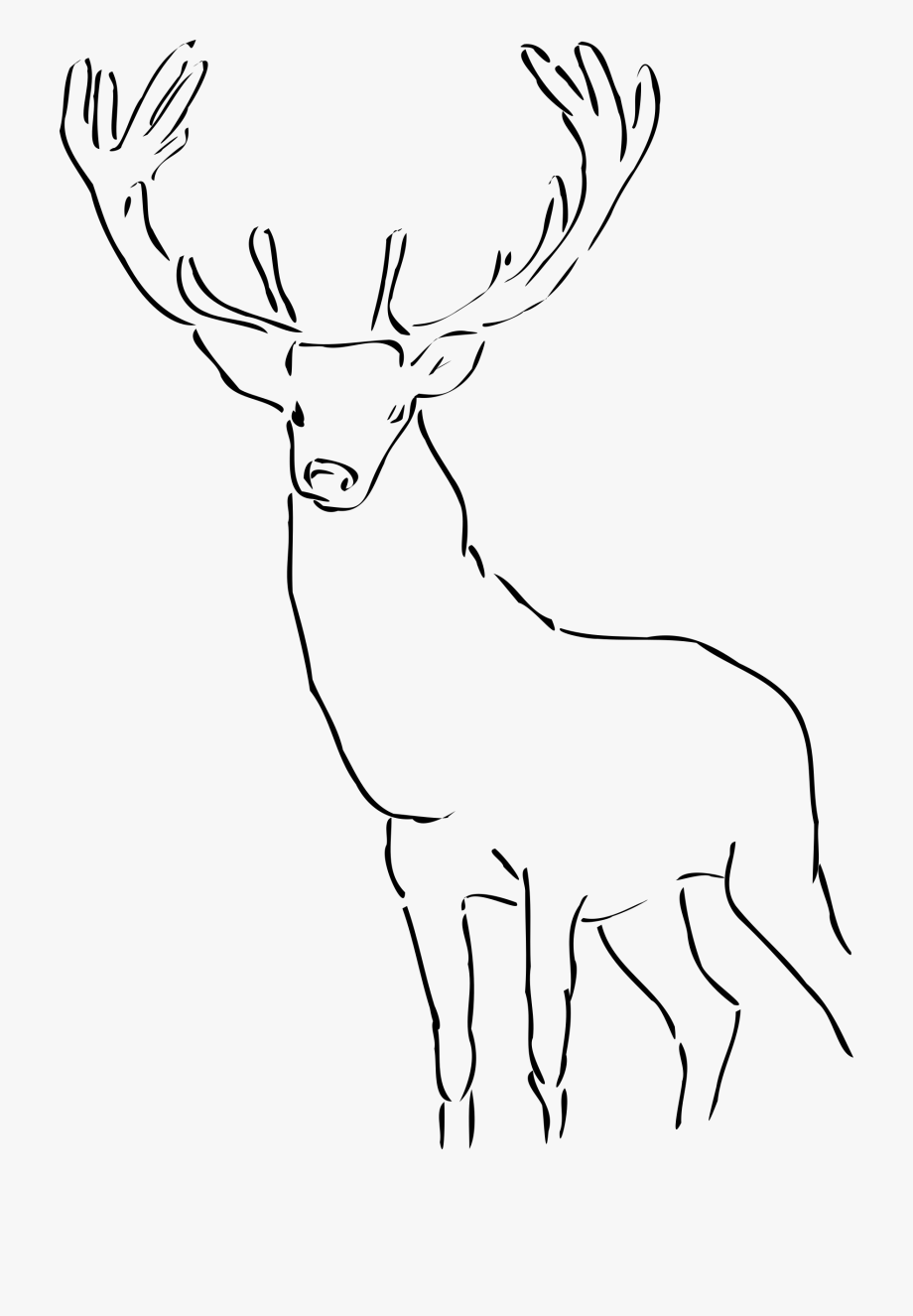 Clipart Black And White Stag , Transparent Cartoon, Free.