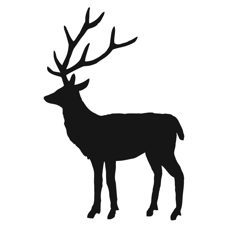 Free Stag Silhouette, Download Free Clip Art, Free Clip Art.