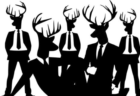 Showing post & media for Stag party cartoon.