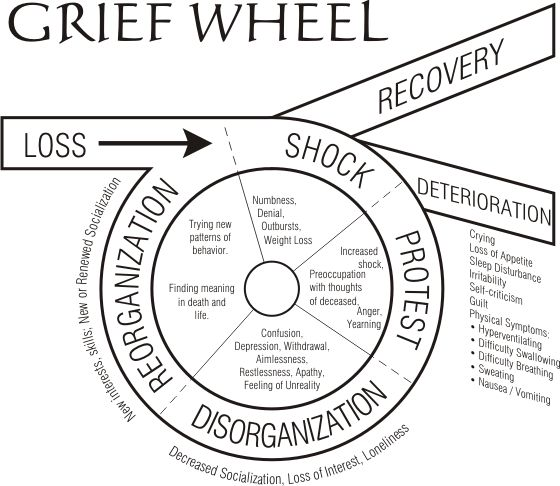 25+ best ideas about 7 Stages Of Grief on Pinterest.