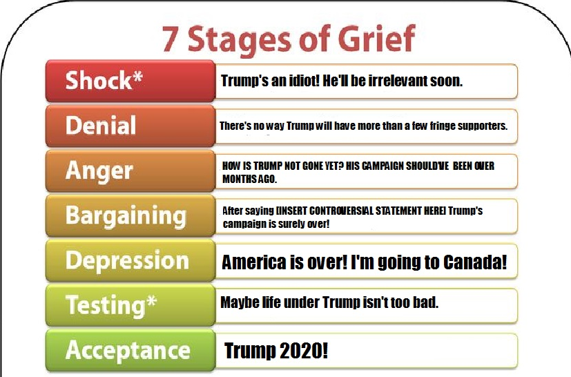 The 5 stages of grief explained in this graph..