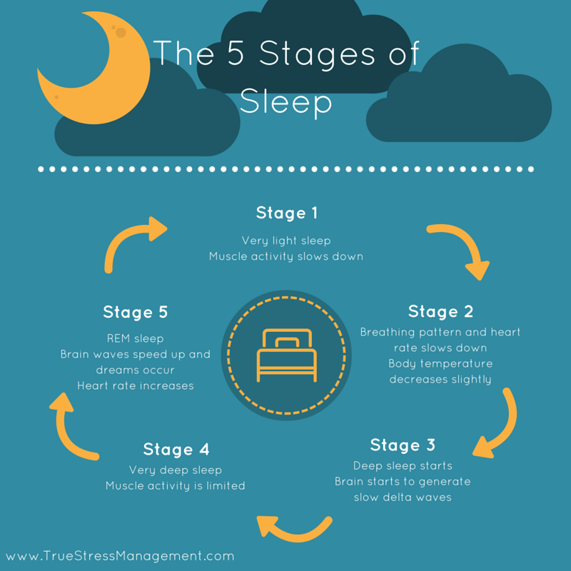 sleep stages One of the most pervasive misconceptions about sleep is that sleep is just a matter of our bodies turning off for several hours, followed by.