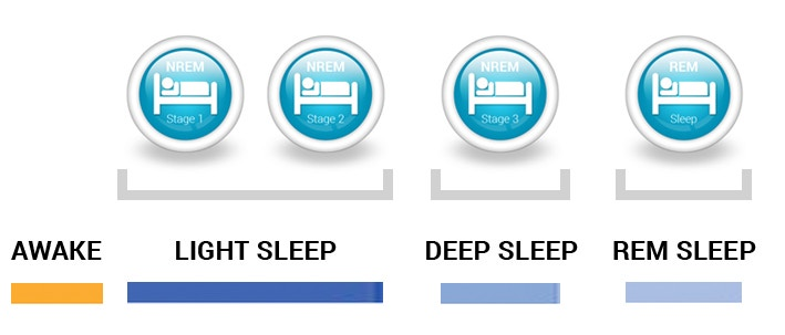 The 4 Different Stages of Sleep — Withings.