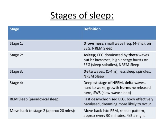 Stages Of Sleep.