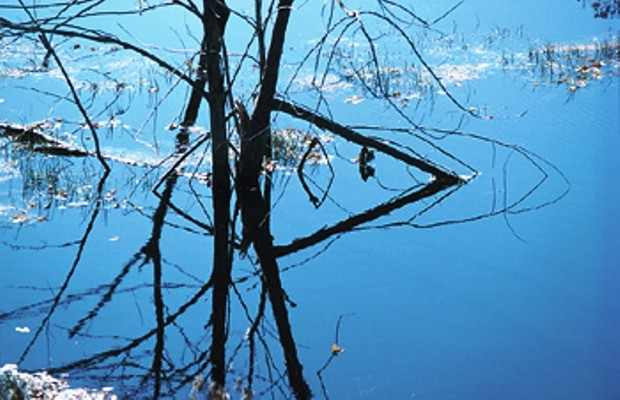 Stagnant Water Ordinance Considered.