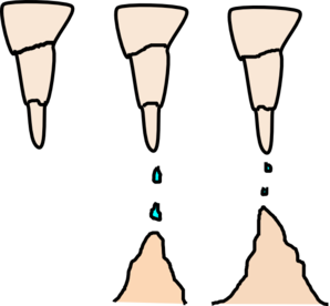 Stalactite And Stalagmite Clip Art at Clker.com.