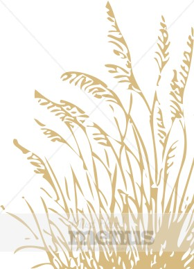 Stalk wheat clipart #3