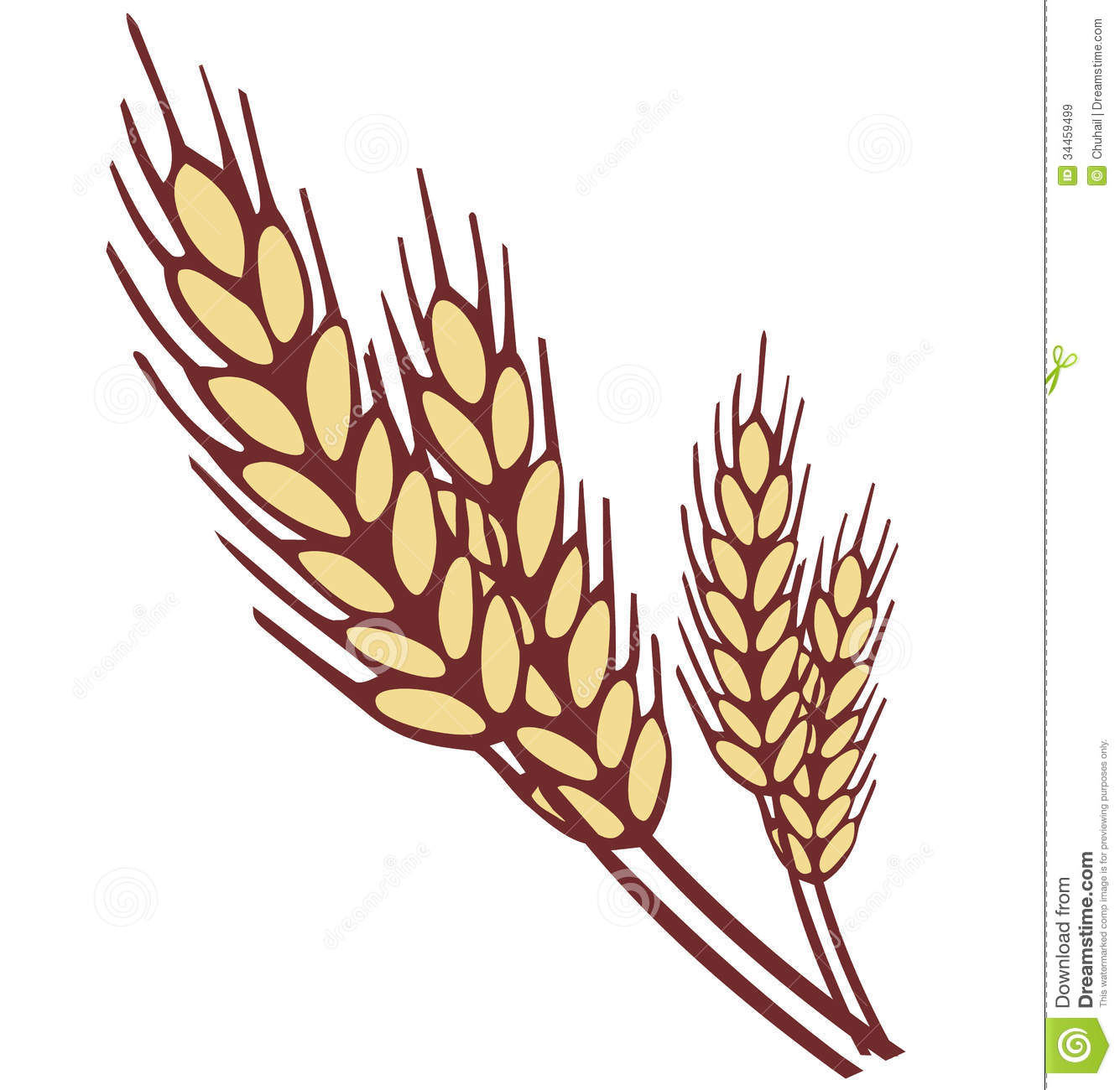 Wheat ear clipart - Clipground