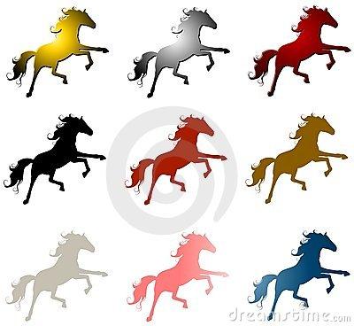 Stallions Stock Illustrations.