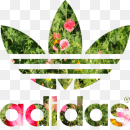 Adidas Stan Smith PNG and Adidas Stan Smith Transparent.