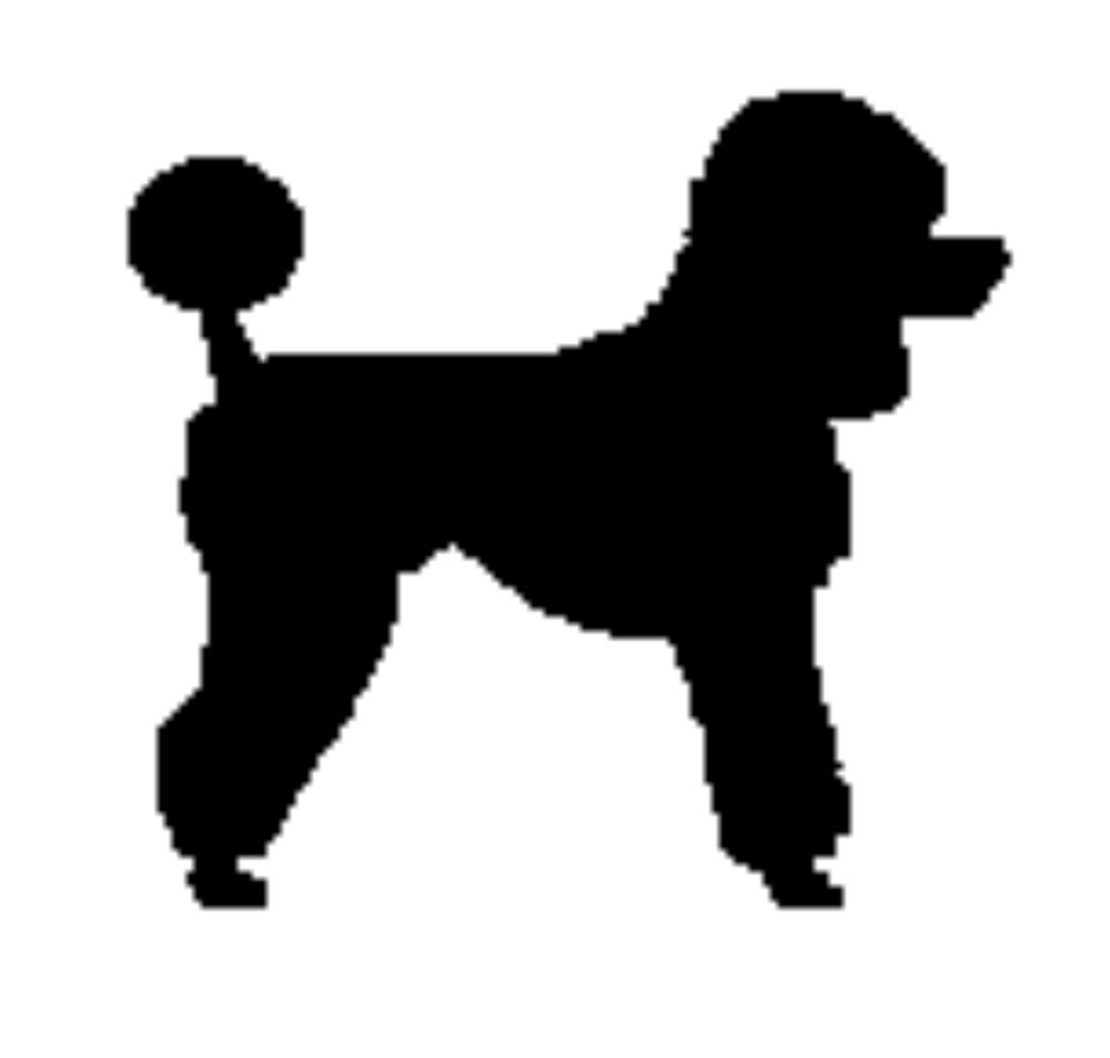 Standard Poodle Clipart.