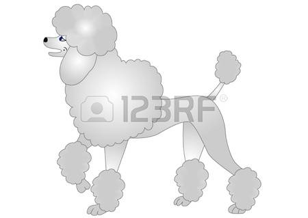 2,107 Poodle Cliparts, Stock Vector And Royalty Free Poodle.