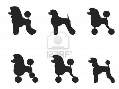 Black Poodle Clipart.
