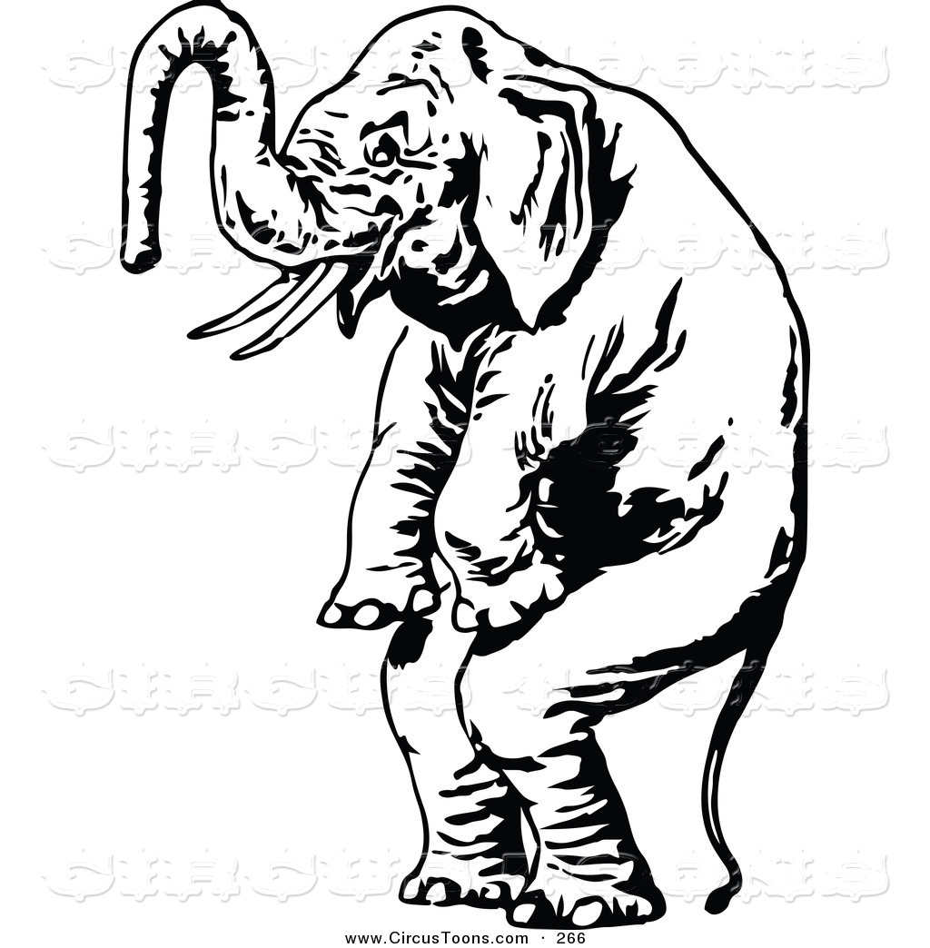 Elephant Clip Art Black And White.