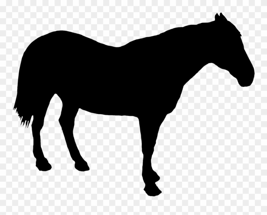 Horse Standing Silhouette Clipart (#1330870).