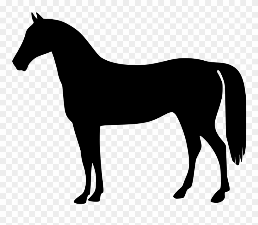 Clipart Of Horses, Horse The And 2 Horse.