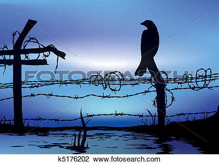 Clip Art of Bird standing on wire fence k5176202.