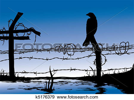 Clip Art of Bird standing on wire fence k5176379.